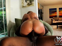 Sexy White Chick Jumping Hard On A Huge Black Dick